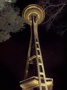 Space Needle at Night by Marilyn Lyon