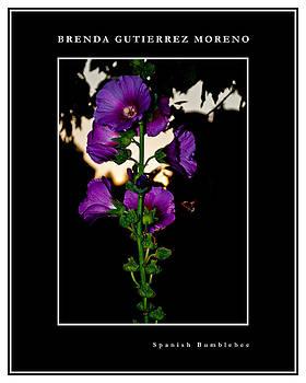 Spanish Bumblebee black border by Brenda Gutierrez Moreno