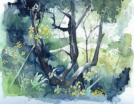Spanish Olive Trees by Stephanie Aarons