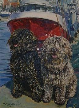Spanish Waterdogs by Dariusz Czarny Lopez