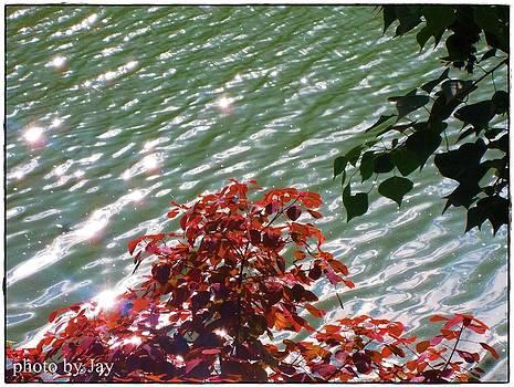 Sparking Water by Jayvardhan Kandpal