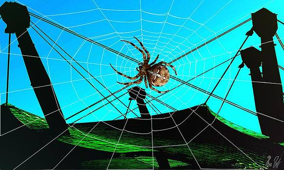 Spider on the olympic roof by Helmut Rottler