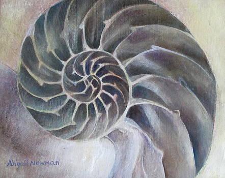 Spiral by Abigail Newman