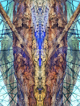 Spirit Warrior by Lynzi Wildheart