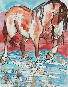 Splash by Jenn Cunningham