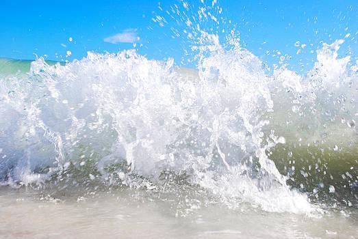 Splash  by Leah Silberman