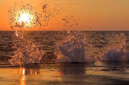 Splash of Sunshine by Jeramie Curtice