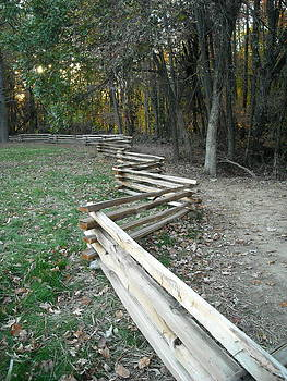 Diane Merkle - Split Rail Fence