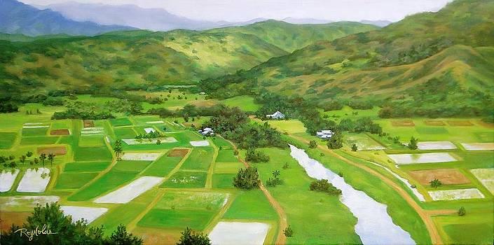 Spring In Hanalei Valley  by Carol Reynolds