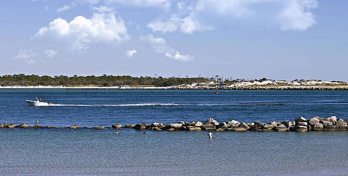 St. Andrews Island by Susan Leggett