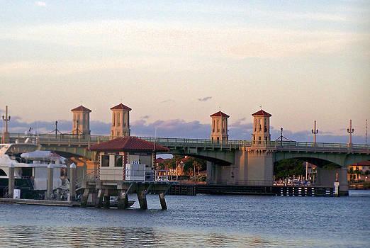 Patricia Taylor - St. Augustine Bridge of Lions