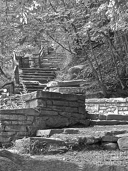 Stairway 3 by Carol Fielding