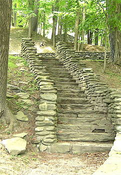 Stairway 4 by Carol Fielding