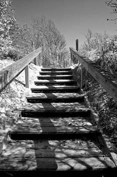 Michelle Wiarda - Stairway to the Sound