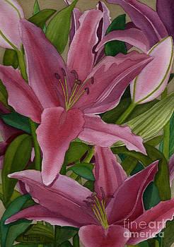 Star Gazer Lilies by Vikki Wicks