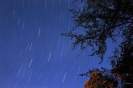 Kay Lovingood - Stars Falling