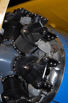 Stearman Heads by Gene Ritchhart