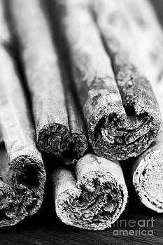 Anne Gilbert - Sticks of Cinnamon
