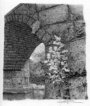 Stone Bridge With Sapling by Gary Gackstatter