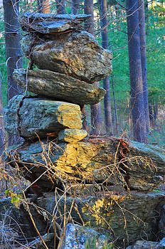 Stone Pile by Peter  McIntosh