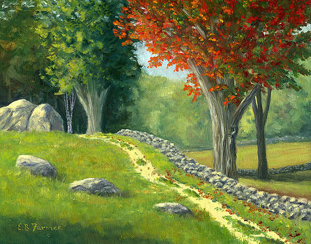 Stone Wall at Remick by Elaine Farmer