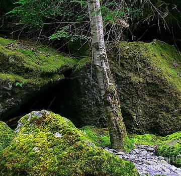 Stonescape I by Michael Wyatt