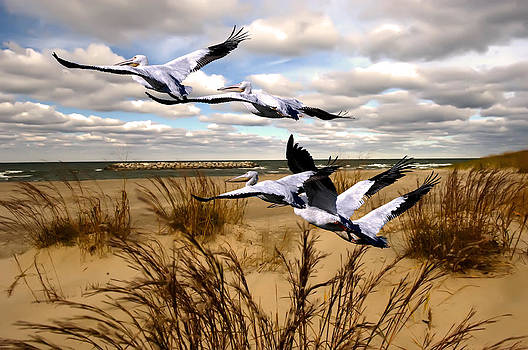 Randall Branham - Straight flush Pelicans