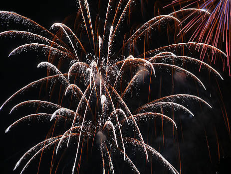 Streaming Fireworks by Monica Lahr
