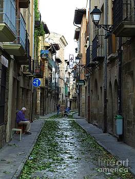 Street in Olite by Alfredo Rodriguez