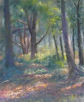 Study for Woodland Interior by Bill Puglisi