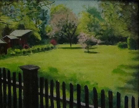 Sue's yard by Mark Haley