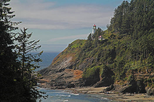 Mick Anderson - Summer at Heceta Head Lighthouse
