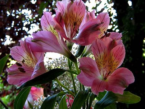Summer Bouquet One by Lynn De Serres