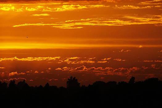 Summer Sunset by Jay Warwick