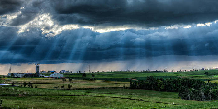 Matt Dobson - Sun Beams over a Dairy Farm