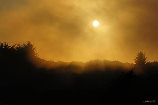 Mick Anderson - Sun in Amber Fog