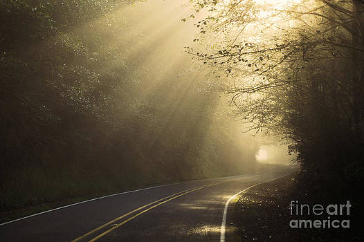 Ron Sanford and Photo Researchers - Sun Rays on Road