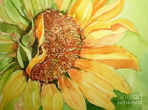 The Sunflower by Barbra Joan