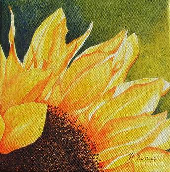 Sunflower up Close by Frances Evans