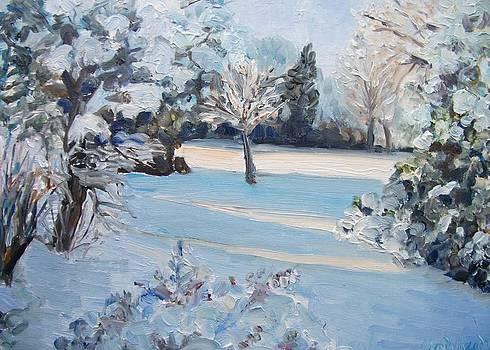 Sunlit Snow by Wendy Head