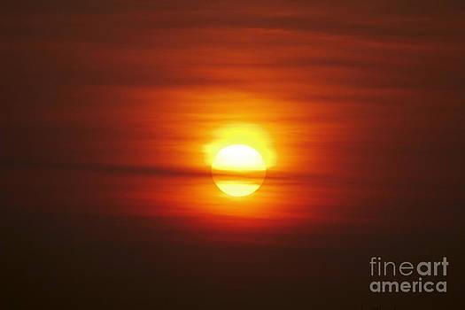 Sunrise 1 by Tony Cordoza