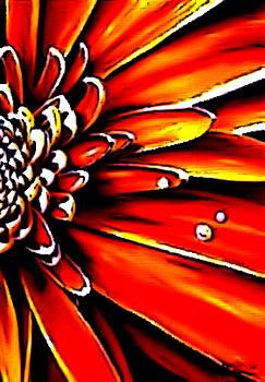 Sun's Flower by Karen Conine