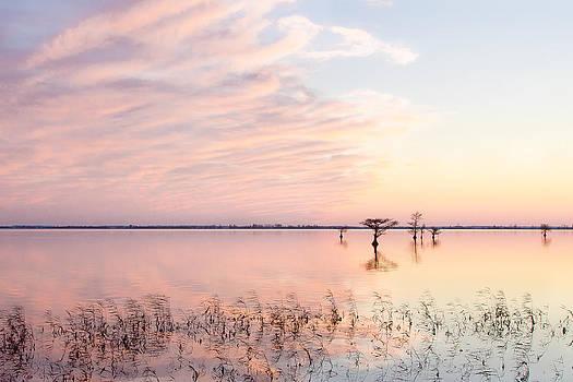 Sunset - Pretty in Pink by Bill Swindaman