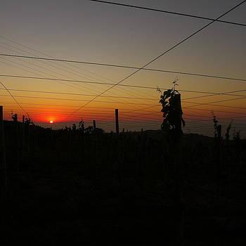 Sunset 3 by Jl Zufiria
