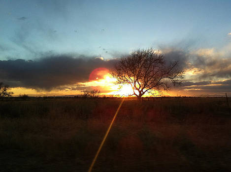 Sunset by Betsey Walker Culliton