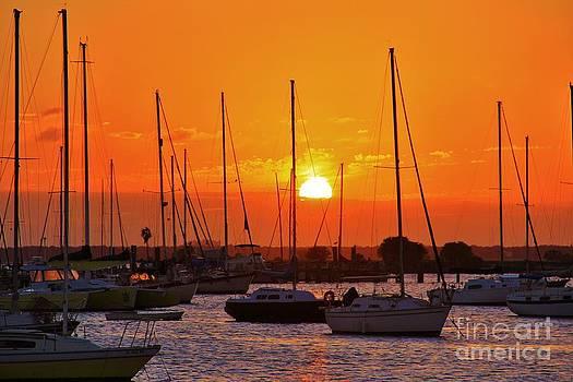 Sunset Davis by Wendy Ohlman