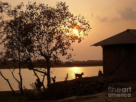 Sunset In My Village by Shah Aziz