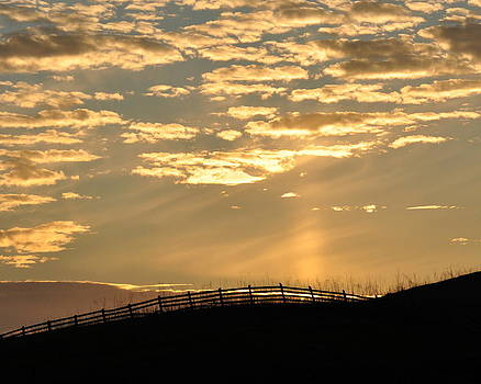 Sunset in Sonoma Countryside by Pamela Rose Hawken
