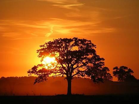 Sunset by Janna Johnson