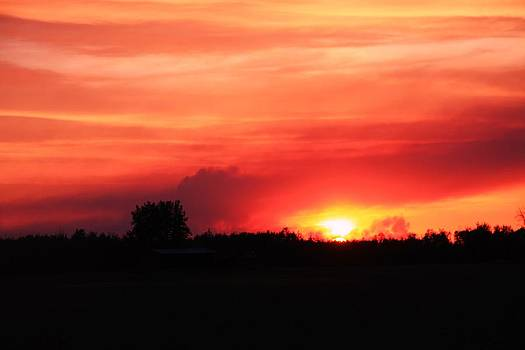 Sunset by Johanna Bruwer